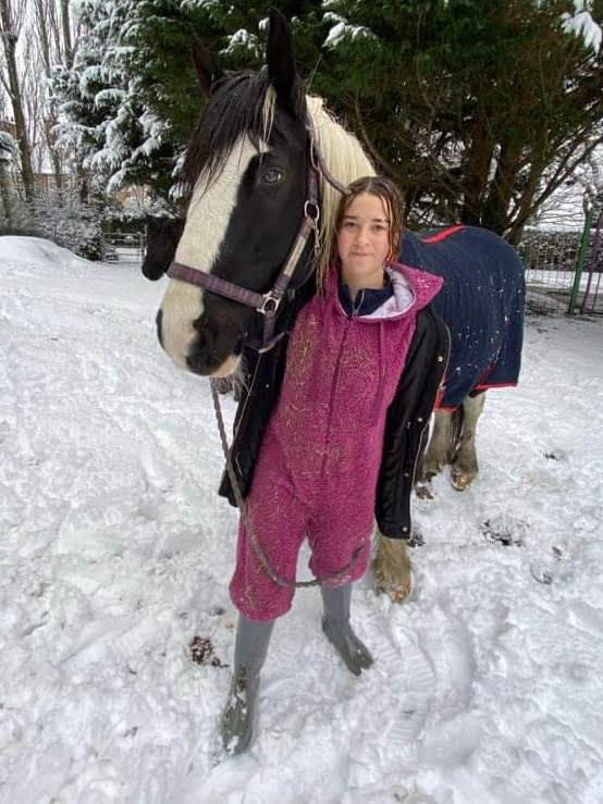 Angel_Ollie in the snow